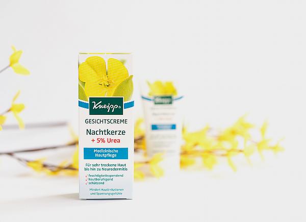 Medizinische Hautpflege - Kneipp Gesichtscreme Nachtkerze