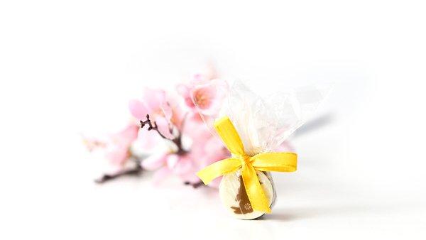 7-TAGE-KUR Vitalität Die Murnauers Bachblüten 7-Tage-Kur Vitalität kombiniert die sanfte Kraft der Bachblüten mit vitalisierenden und energiespendenden Vitaminen und Mineralstoffen. Vitamin E trägt dazu bei, die Zellen vor oxidativem Stress zu schützen. Magnesium trägt zu einem normalen Ernergiestoffwechsel bei. Niacin trägt zur Verringerung von Müdigkeit und Ermüdung bei. Die Kur unterstützt Sie dabei, neue Kraft und Energie für den Alltag zu tanken und ist hergestellt mit 5 hochwertigen ORIGINAL Bachblüten aus England. Anwendung bei: Antriebslosigkeit Erschöpfung fehlender Energie Leistungsabfall Müdigkeit Stress Inhalt: 7 x 20ml PZN: 12585891