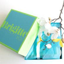 Die BRIGITTE Box Juni/Juli 2016 enthält 8 Beauty-News plus 2 zusätzliche Geschenke sowie das BRIGITTE Magazin. Wir möchtem Euch diese Box heute einmal genauer vorstellen.  Die BRIGITTE Box im Juni/Juli 2016   4711 ACQUA COLONIA LIME & NUTMEG SHOWER GEL Das sagt die Produktbeschreibung: Das Aroma Duschgel mit feuchtigkeitsspendendem Bambusextrakt verleiht ein angenehmes Hautgefühl […]