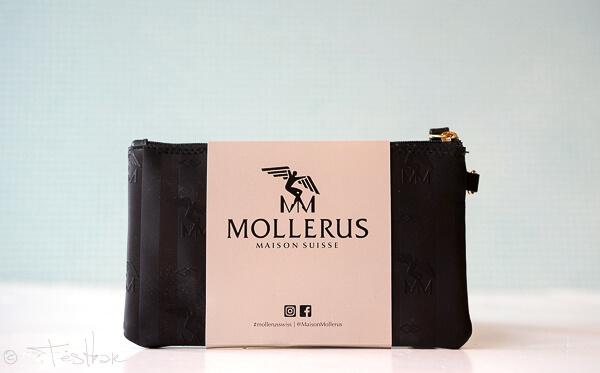 Maison Mollerus - Pochette EIGER