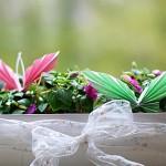 Kreativ-Ideen – Obstkiste zur Blumenkiste umfunktionieren