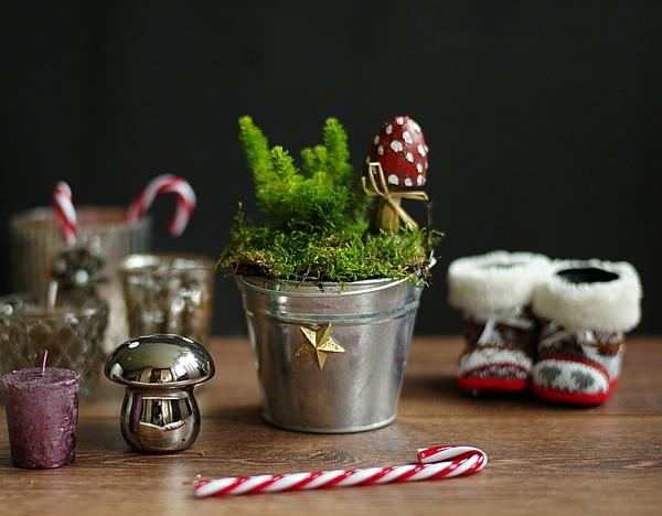 Diy h bsche weihnachtsdeko im blumen und zinktopf for Weihnachtsdeko im auayenbereich